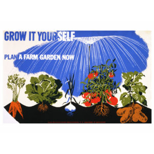 Grow it Yourself - Vintage WW2 Poster