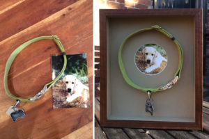 December 2016: Not all framers are created equal