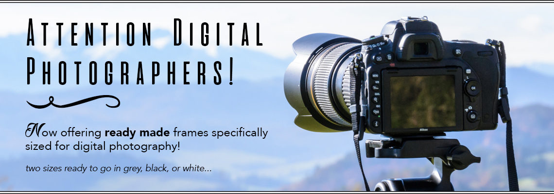 NEW! For Digital Photographers