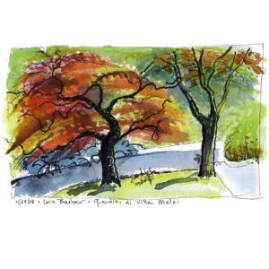 Tree on Fire, Giardini di Villa Melzi - print by Lois Barber