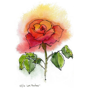 Rose in Monastery Garden - print by Lois Barber