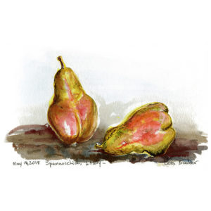 Pears, Spannocchia - print by Lois Barber