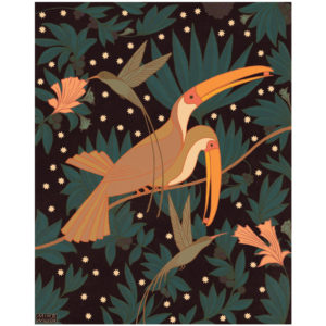 Doctorbirds & Toucans - print by Mike Willcox