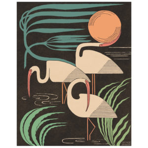 Ibis & Hurricane - print by Mike Willcox